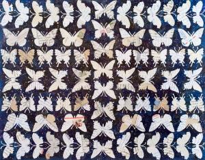 """Letter Butterflies 22 X 28"""""""