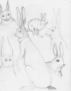 Sketchbook 3